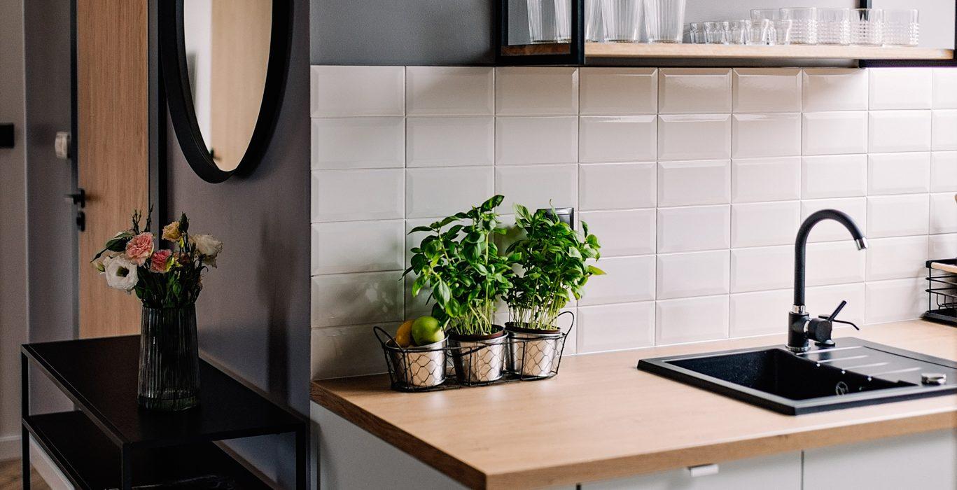Apartamenty NOVA BIAŁKA Białka Tatrzańska kuchnia 2 apartament 3